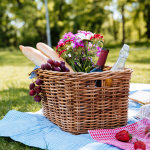 OUR PICK OF THE BEST PICNIC SPOTS IN YORK SELECTED BY OUR YORK HOTEL